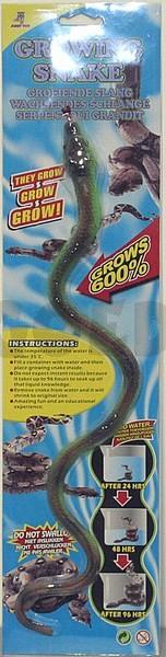 Groeidier slang groen