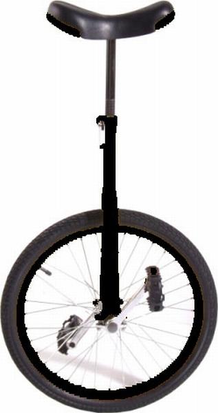 Eenwieler 20 inch zwart